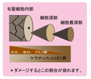 rameraekisyou-300x260